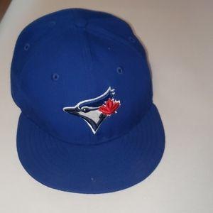 Blue jay hat